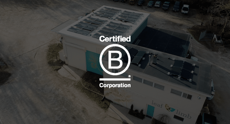 Becoming a B Corp: The Journey of a Solar Powered Tree Care Company
