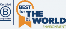 2017 & 2018 Best For the World Environment Logo