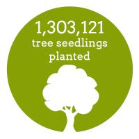 Impact_Trees Planted Metric